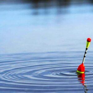 12 июня пройдут соревнования по лову рыбы на поплавочную удочку